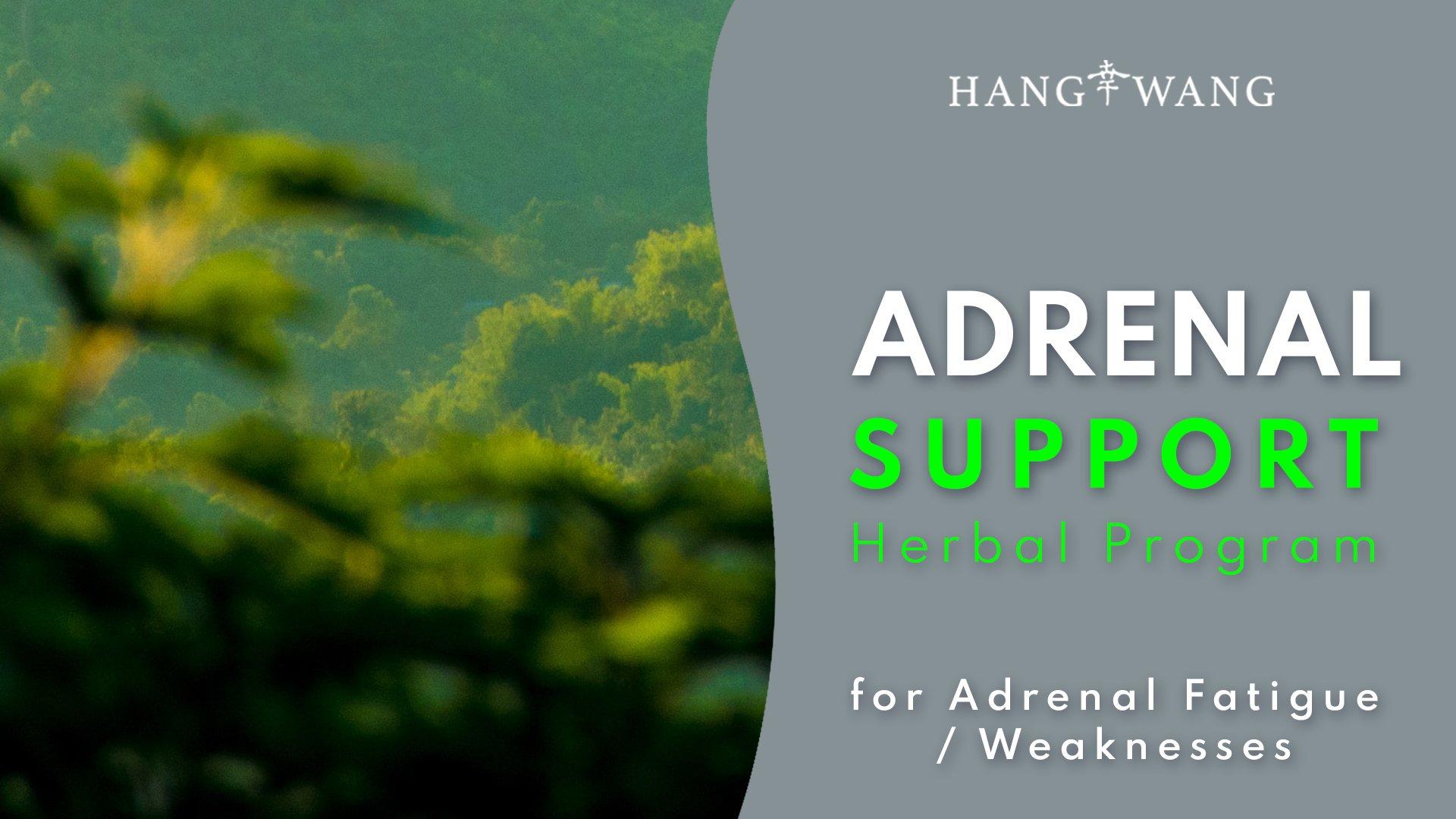 Adrenal Support Herbal Program